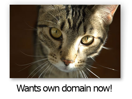 ozzie wants his own domain