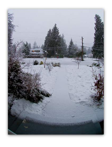 20070206_snow.jpg