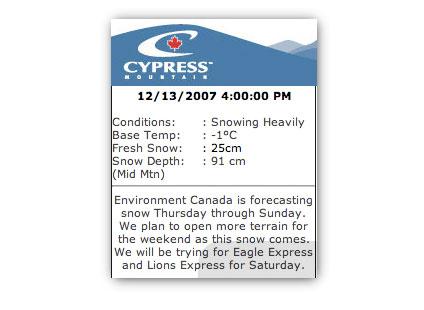 20071213_cypress.jpg