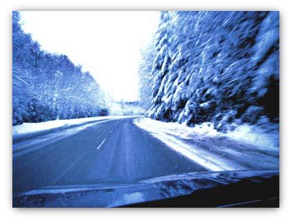 20071228_cypress_road.jpg