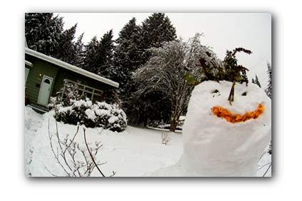 20080129_snowman.jpg