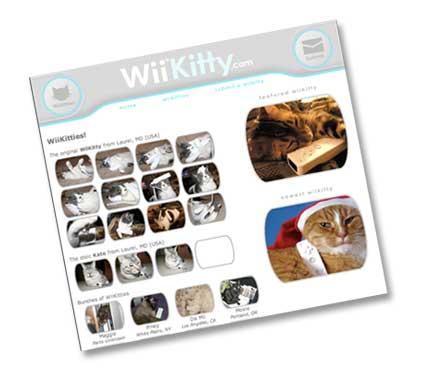 20061223_wiikitty.jpg