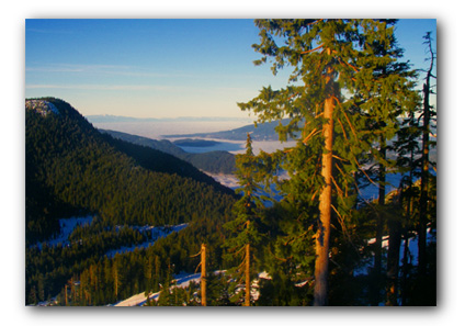 20090117_howesound_fog-sm