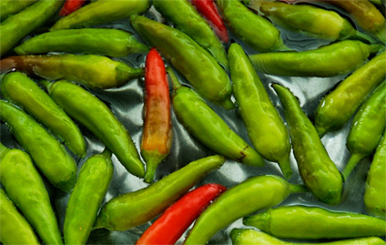 20090828_peppers_soaking-424